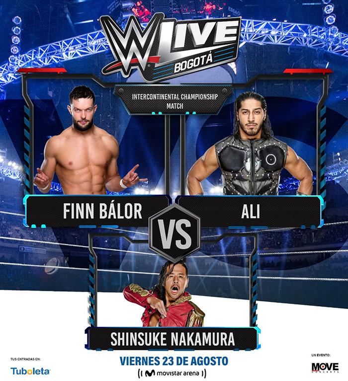 WWE Finn